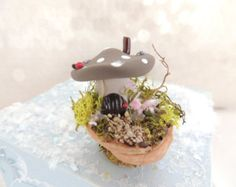 Toad Stool House Fairy Cottage In A Walnut Shell  Whimsical Fairy Garden