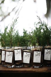 Live pine tree saplings used as centerpieces. Wonderful!