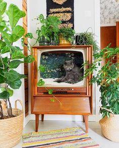 Flea Market Decorating, Deco Originale, Cat Room, Cat Furniture, Barbie Furniture, Furniture Design, Old Tv, Decoration, Room Inspiration