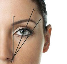 eyebrow diagram