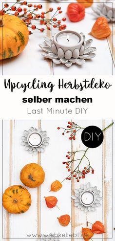 DIY Herbstdeko basteln aus Pistazienschalen. Kreative Idee für selbstgemachte Deko im Herbst. Upcycling Tischdeko aus Pistazienschalen. Basteln mit Kindern im Herbst. Leuchtende Geschenkidee für dunkle Herbsttage. Windlichter basteln aus Naturmaterialien. Die Anleitung findest du auf meinem Blog wiebkeliebt.de #herbstdeko #tischdeko #upcycling #Windlichter #geschenkidee #herbstdiy Diy Blog, Upcycle, Diy Upcycling, Fall Diy, Pistachio, Halloween Diy, Diy Projects, Kids Rugs, Flowers