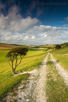 Country road (South Downs National Park near Telscombe, East Sussex, England) by Slawek Staszczuk