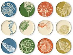 Thomas Paul's gorgeous melamine plates.