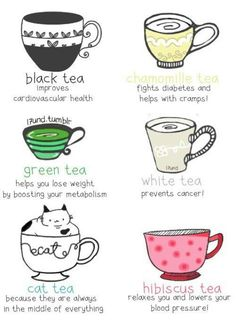 Reaping the sweet benefits. Cats & tea just... go together. But actually white is wrong. White is good for complexion, skin, full of antioxidants and hydration. Green tea contains the EGCG complex that helps prevent cancer.