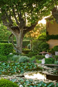 What could be better than the photography of Clive Nichols Garden Photography and the landscape design of Dominique Lafourcade. I simply adore the circular staircase up to the tree viewing platform. It adds such a a whimsical, human touch to the whole design