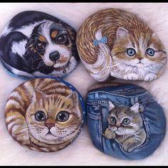 """211 Likes, 6 Comments - Ayşegül Tolunay (@pietraizmir) on Instagram: """"Bu haftaki çalışmalarımı kaçırmayın derim☺️#kedi #köpek #cats #dog #stonepainting #taşboyama…"""""""