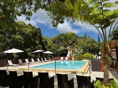 Sarramea Hotel Evasion New Caledonia, Pacific Ocean and Australia Hotel Evasion is conveniently located in the popular Sarramea area. The hotel offers a high standard of service and amenities to suit the individual needs of all travelers. Free Wi-Fi in all rooms, facilities for disabled guests, luggage storage, Wi-Fi in public areas, car park are on the list of things guests can enjoy. Designed for comfort, selected guestrooms offer internet access – wireless, air conditioning...