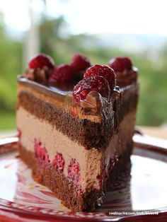 Cheesecake Cake, Cheesecake Recipes, Cookie Recipes, Dessert Recipes, Rasberry Cake, Torte Recepti, Torte Cake, Biscotti Recipe, Easy Soup Recipes