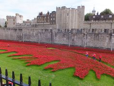 Tower of London Poppies - August 2014 Tower Of London, August 2014, 30th, Poppies, Explore, Building, Travel, Viajes, Buildings