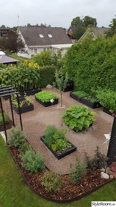 I'm loving the black planter boxes! Vege Garden Ideas, Vegetable Garden Design, Garden Pots, Front Garden Landscape, Balcony Plants, Garden Trellis, Garden Structures, Garden Planning, Backyard Landscaping