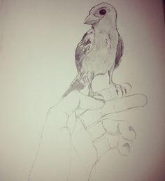 Bird drawing by jwrii