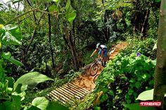 PwC bike park, Sandton, Johannesburg, South Africa Sandton Johannesburg, Bike Parking, Bike Reviews, Bike Trails, Mtb, Mountain Biking, South Africa, The Past, Tips