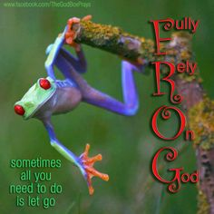 F.R.O.G. Fully Rely On God  sometimes all you  need to do  is let go