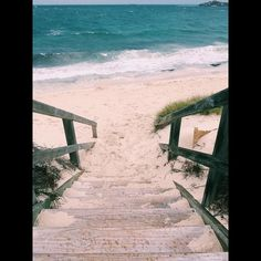 Flashback to when I found my own private beach on Rottnest Island #rottnestisland#perth#wa#aus#australia#wanderlust#adventure#flashback#beach#beachlife#waves#ocean#holidays#travel#traveling#vsco#vscocam by joshtravels1 http://ift.tt/1L5GqLp