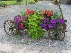 Old wagon planter