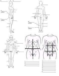 body regions worksheet photos mindgearlabs. Black Bedroom Furniture Sets. Home Design Ideas