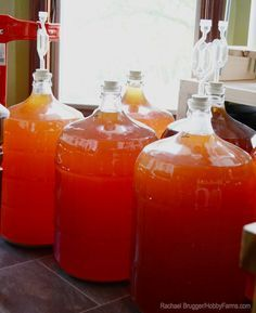 Got a bumper of fruit or herbs? What better way to enjoy it than in a homemade wine?