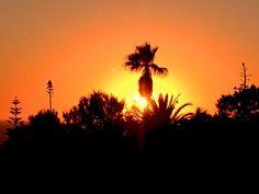 @quicksilver_surf #ericeira #surf #skate #atlanticocean #portugal #sunset