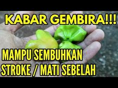 Healthy Nutrition, Healthy Tips, Herbal Remedies, Natural Remedies, Health Trends, Joko, Lower Blood Pressure, Knee Pain, Herbal Medicine