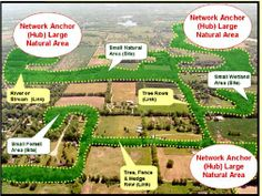 What is Your Green Infrastructure Vision?