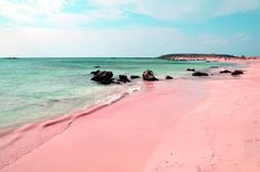 Pink sand on Ellafonisi Beach, Crete, Greece. Pink sand is formed of tiny red organisms that grow on dead coral reefs and pieces of shells which fall to the ocean floor and are washed onto shore. Photo credit: Jan-Erik