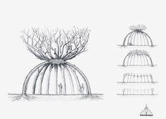El jardinero paciente, una vivienda construida con árboles de cerezo - Noticias de Arquitectura - Buscador de Arquitectura