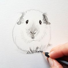Updates from CardCreative on Etsy Animals For Kids, Cute Animals, Pig Sketch, How To Drow, Pig Drawing, Pig Illustration, Pig Art, Watercolor Animals, Affordable Art