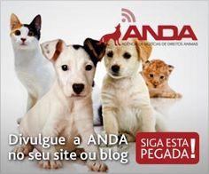 Divulgue a ANDA no seu site