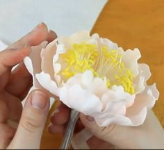This tutorial demonstrates how to make a beautiful open peony, start to finish!  The open peonies are my favorite style&hellip...