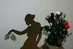 creating shadows and wall artworks for wall decoration