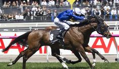 Godolphin send more northern hemisphere runners to Australia : International Horse Breeding and Racing news updated daily, www.thoroughbrednews.com.au