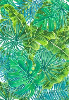 Watercolor painting of various tropical leaves • Buy this artwork on apparel, stickers, phone cases, and more.
