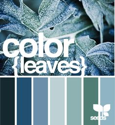frostbitten hues of color {leaves} by design seeds
