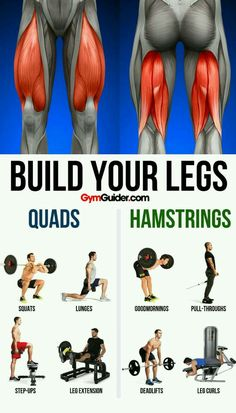 There are a ton of benefits of having strong legs! You may get tired of countless squats, lunges, and cardio, but the benefits of having strong legs are definitely worth all that hard work. Gym Workout Tips, Weight Training Workouts, At Home Workouts, Man Workout, Quads And Hamstrings, Glutes, Squats And Lunges, Leg Curl, Big Legs
