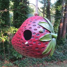 Juicy birdhouse makes an ideal roost during the off-season and nest spot through spring. Neighbors will wonder how you grew one so big? Strawberry birdhouse features sturdy poly-resin construction wit