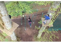 Make your hen party unique, exciting and fun packed at the spectacular Treetop Ropes Adventure Course. Tree Tops, Party Activities, Dublin, Night Life, Deck, Challenges, Adventure, Ropes, Outdoor Decor