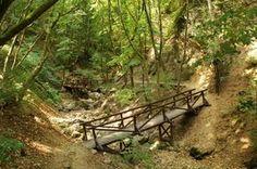 Van, aki a kilátókért rajong, van, akit a barlangok titokzatossága vonz, mások pedig azt állítják, hogy nincs izgalmasabb egy sziklafalakkal szegélyezett, mély völgybe vezető túránál. Nekik ajánlunk öt hazai szurdokot, ahol megcsodálhatják Magyarország legmagasabb vízesését, bebújhatnak az Ördöglikba, sőt akár... Budapest Hungary, Outdoor Furniture, Outdoor Decor, Garden Bridge, Grand Canyon, To Go, Outdoor Structures, Explore, Country