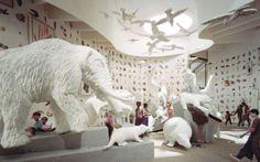 Panama Museum of Biodiversity by Bruce Mau Design , via Behance