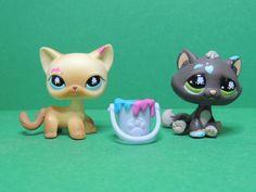 #816 815 chat kitty short hair european paint cat LPS Littlest Pet Shop Figure