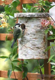 Top 10 des nichoirs et mangeoires à oiseaux