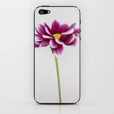 Chrysanth iPhone & iPod Skin by David P Hunter - $15.00