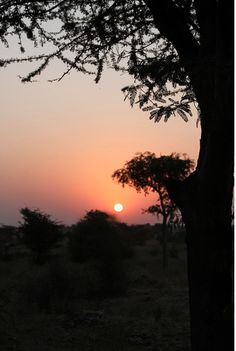 Sunset at Barefoot College