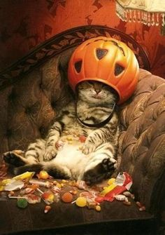 Funny photo - too much candy!
