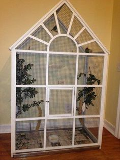 Another aviary built from the ground up made of pine for the frame