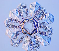 Up close real snowflakes | The Beauty of Snowflakes Up Close