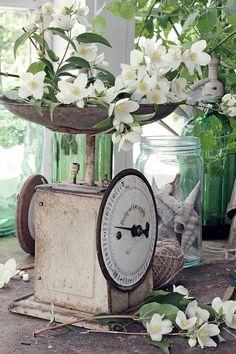 VIBEKE DESIGN: Reuse in the garden