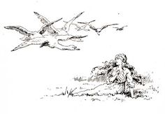 The Six Swans -- E. Stuart Hardy -- Fairytale Illustration