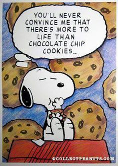 Happy National Chocolate Chip Day.