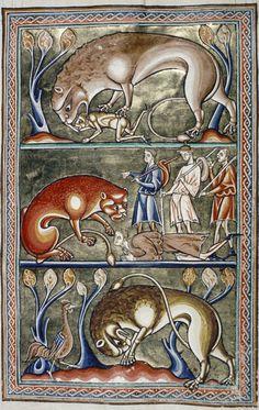 Medieval Bestiary : Lion Gallery