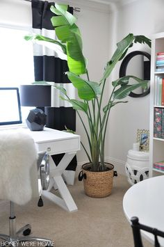 Honey We're Home: Black and White and Bright Home Office Tour